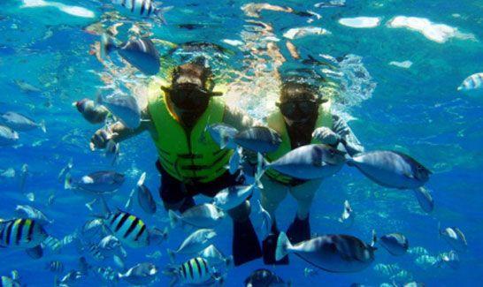 mergulho-em-bombinhas-costa-esmeralda